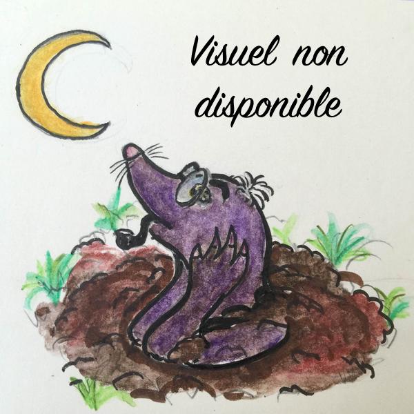 Le Chevalier de La Barre - Michel Zévaco Image